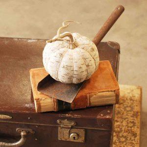 Birch Pumpkin