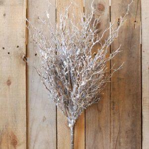 Snowy Birch Branches