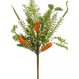 Carrot Bush - Set of 2