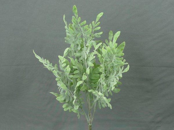 """Flocked Dusty Miller bush x5 - 16"""""""