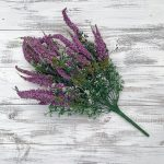 Astilbe Mix Bush x 10 - Lavender