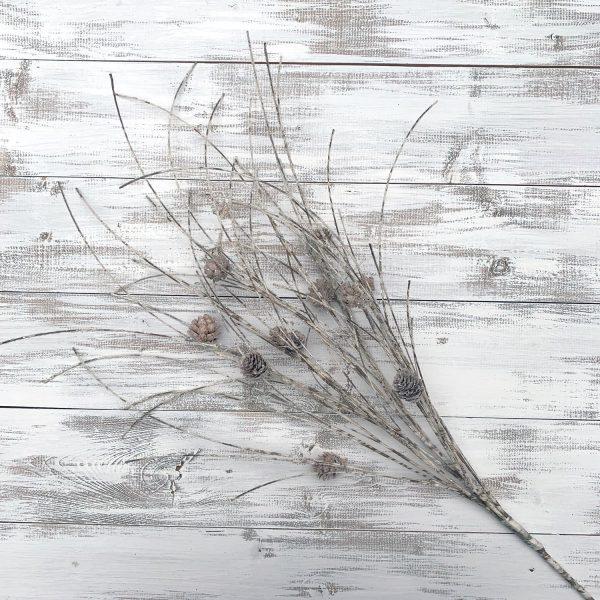 Glittery Birch Twig Bundle