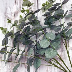 Eucalyptus Bush x 4