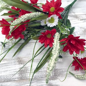 Red/White Daisy Astilbe Bush x 12 - 18""