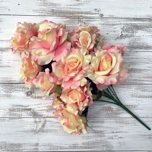 Rose Bush - Peach/Pink/Cream x 12