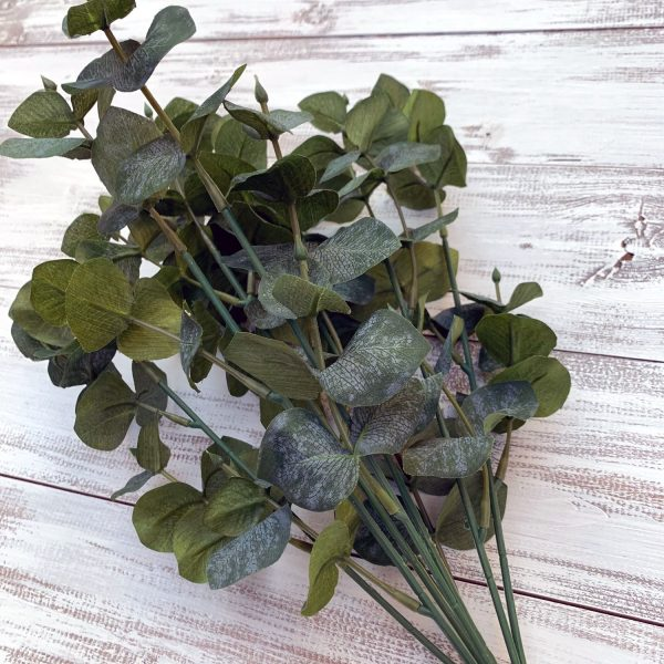 "Dk. Green Eucalyptus Bush x 8 - 19"""