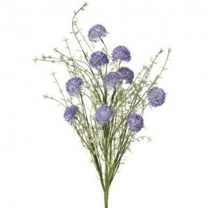 Lavender Wild Allium Bush - 24""