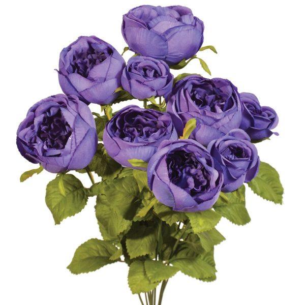 Dark Purple Cabbage Rose