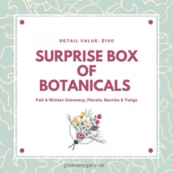 Fall/Winter 2020 Surprise Box of Botanicals