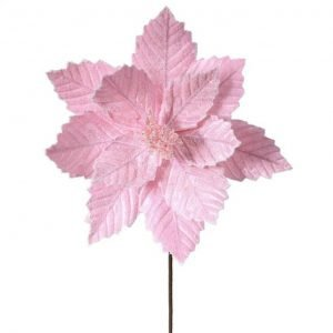Candy Pink Poinsettia Stem - 20""