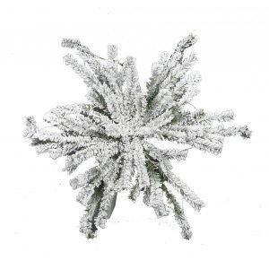 Snowy Pine Snowflake Base