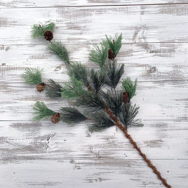 Bristle Pine Spray